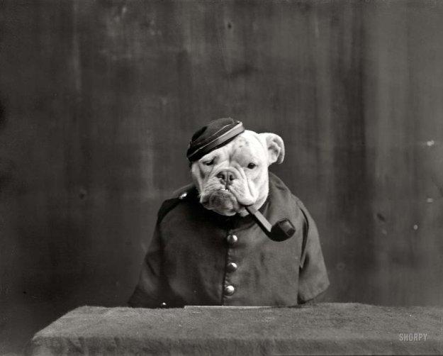 """Странные фотографии из прошлого (30 фото) """" Funny Life"""