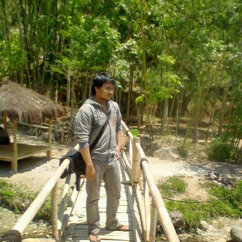 Aries Wahyusiwidodo images, pictures