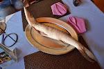 Barakuda, którą spałaszowaliśmy na lunch