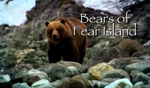 Nied¼wiedzie z wyspy strachu / Bears of Fear Island (2011) PL.1080i.HDTV.x264 / Lektor PL