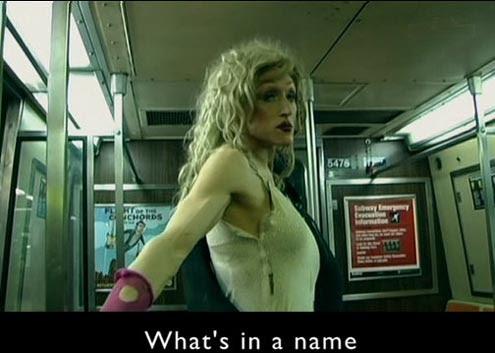 Czym jest kobieco¶æ? / What's in a Name? (2010) PL.TVRip.XviD / Lektor PL