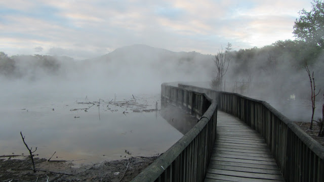 A walkway over a steaming thermal pond in one of Rotorua's public parks.