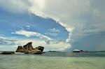 Bird Island.