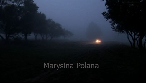 Marysina Polana (2010) PL.TVRip.XviD / PL