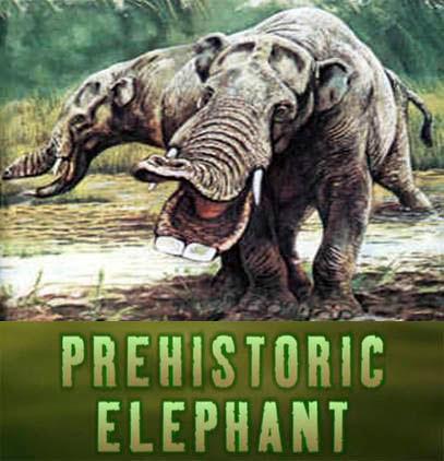 Prehistoryczny s³o? / Prehistoric Elephant (2007) PL.TVRip.XviD / Lektor PL
