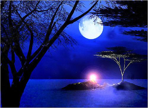hình trăng mùa đông