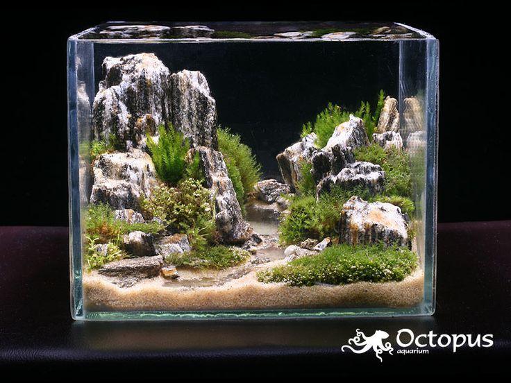 Bộ sưu tập bố cục núi đá đơn giản cho hồ thủy sinh