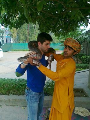 Хайме Альгерсуари с индийской змеей перед Гран-при Индии 2011