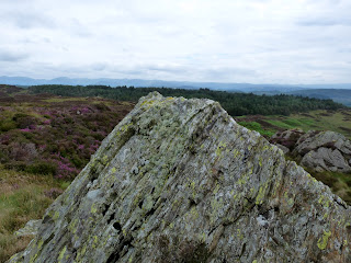 Arnsbarrow Hill to Grizedale Forest