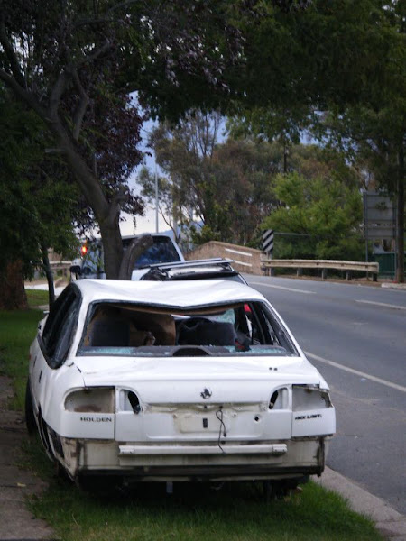white commodore