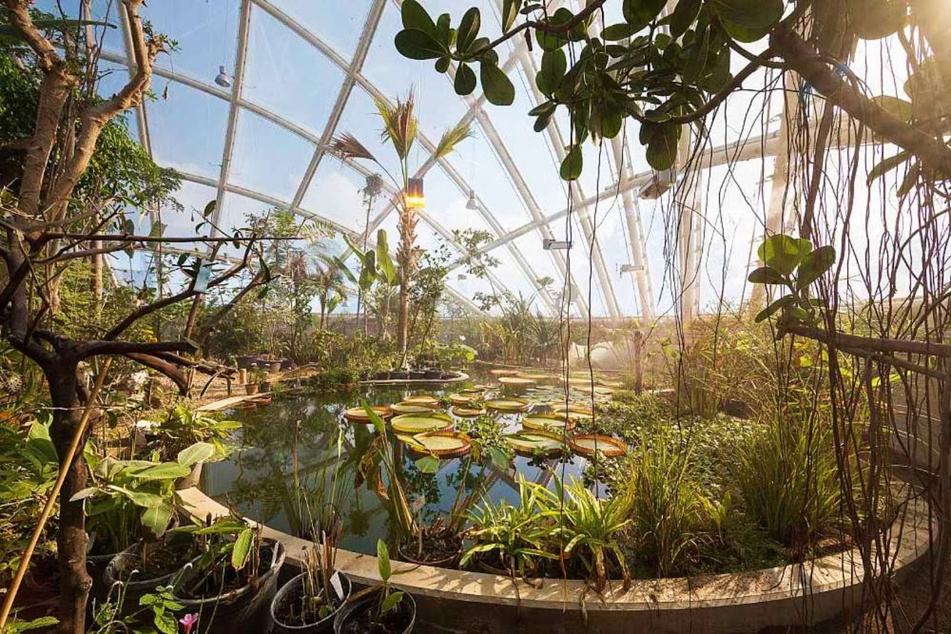 10-Greenhouse-in-the-Botanic-Garden-by-C.F.-Møller-Architects
