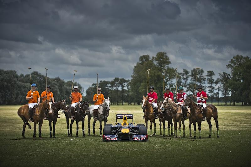 Red Bull на полях Аргентины с лошадками
