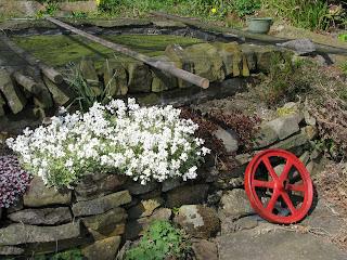 Scene in local garden