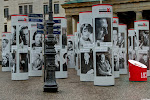 Berlin 1933 bis 1938: Zerstörte Vielfalt (Ausstellung)