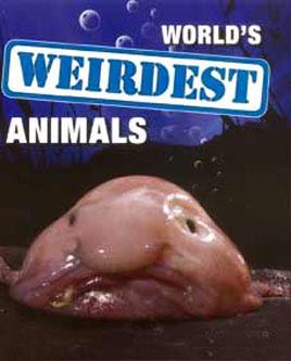 Najdziwniejsze zwierzêta ¶wiata / World's Weirdest (2010) PL.720p.HDTV.x264 / Lektor PL