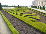 Cool, angular shot of some Versailles hedges