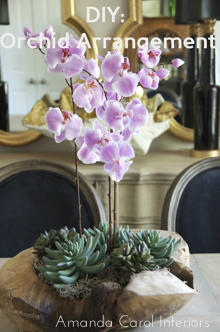DIY: Orchid and Succulent Arrangement