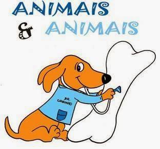Pet Shop Animais & Animais, Av. Abel Cabral, 2271 - Parque dos Eucaliptos, Natal - RN, 59151-250, Brasil, Loja_de_animais, estado Rio Grande do Norte