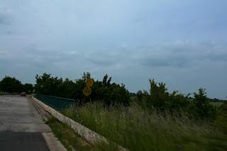 Mnogi mostovi su označeni s ovakvim znakovima sa slikom tenka