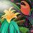 Hawa Djibril review