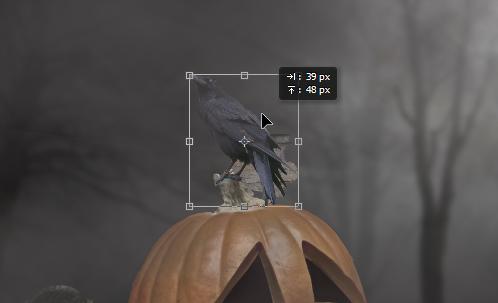 Tambahkan burung gagak