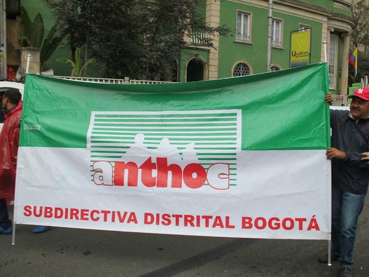 Capacitación 2015 Anthoc seccional Bogotá