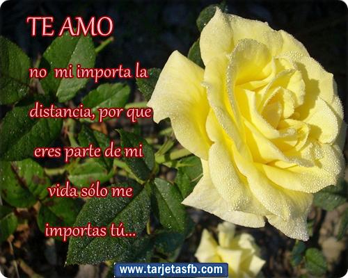 Video Emotivo con Frase de Amor que diga Eres el motivo  - Tarjetas De Amor Virtuales