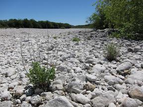 Huge White Riverbed
