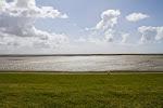 Wattenmeer, da grasten gestern noch die Schafe