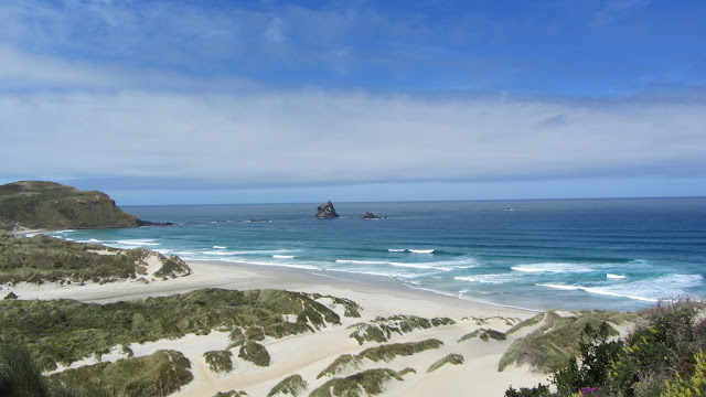 Sandfly Bay on the Otago Peninsula.