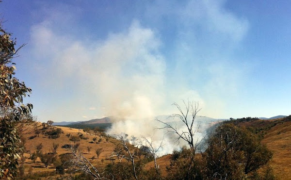uriarra fire