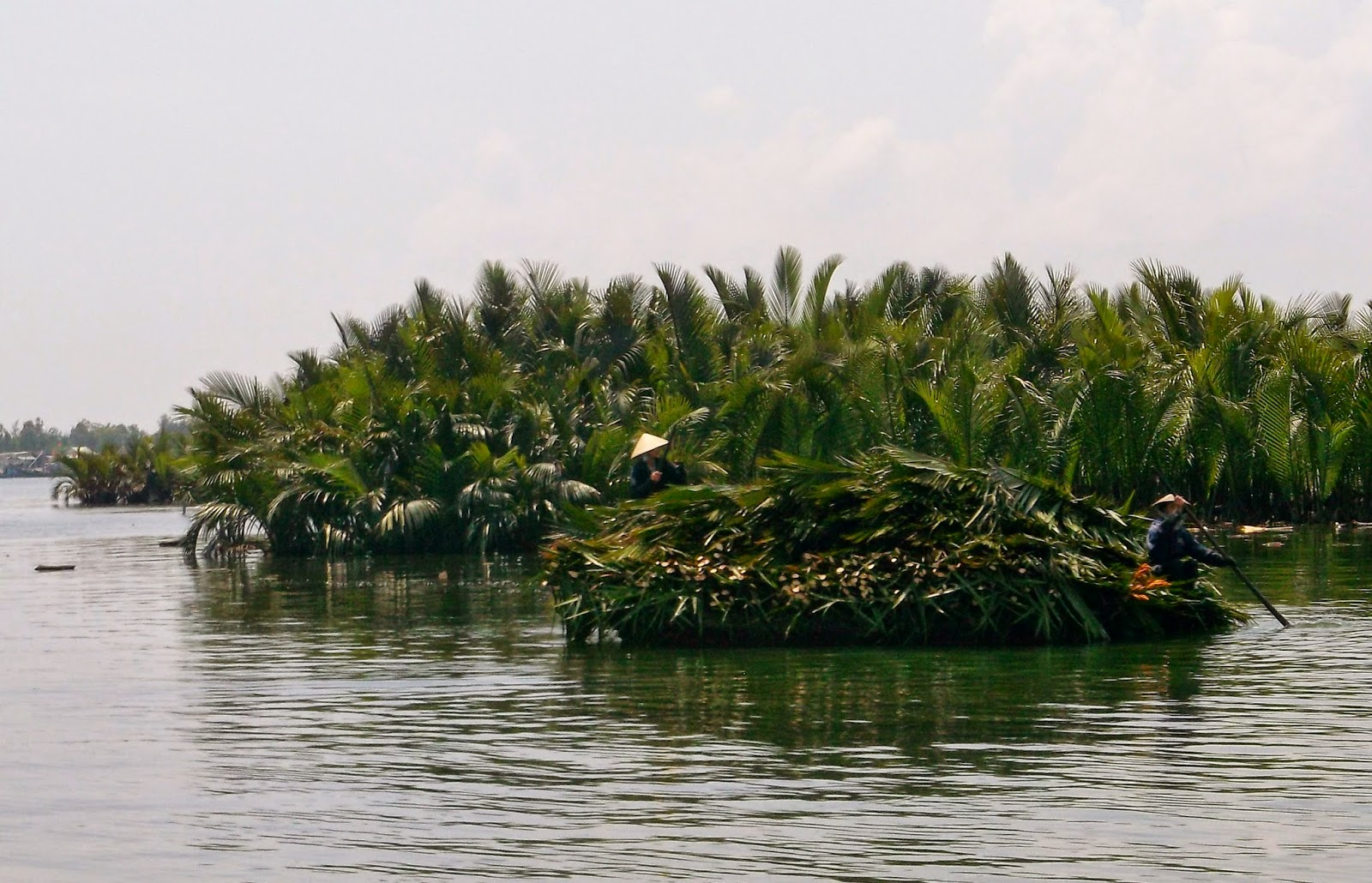 A barge full of palms, soon to be a roof... 'Palm Paradise'...