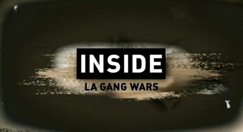 Wojny gangów w Los Angeles / Inside LA Gang Wars (2008) PL.TVRip.XviD / Lektor PL
