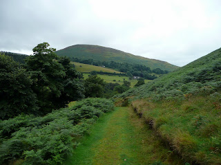 Ling Fell from path to Sale Fell