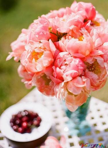 cắm hoa mẫu đơn trang trí bàn ăn