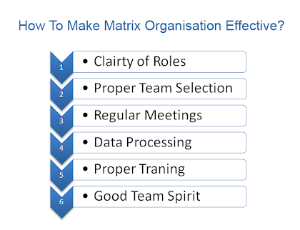 how to make matrix organisation effective