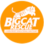 bigcatrescue Youtube Channel