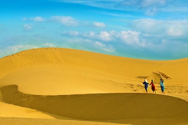 Ảnh bãi cát vàng hoang sơ, hùng vĩ