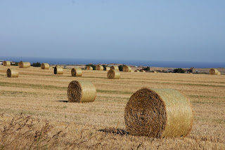 And more bales