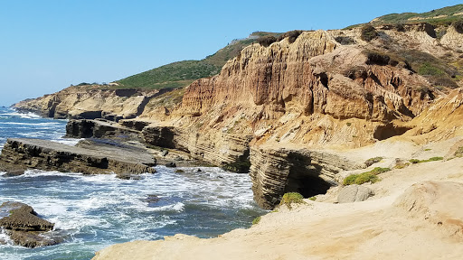 National Park Point Loma Tide Pools Reviews And Photos 1800
