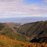 Fonte Do Bispo - Funchal, Madeira