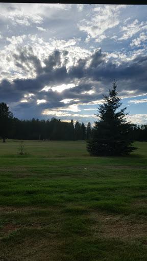 Breton Golf Course, 5505 47 St, Breton, AB T0C 0P0, Canada, Golf Club, state Alberta