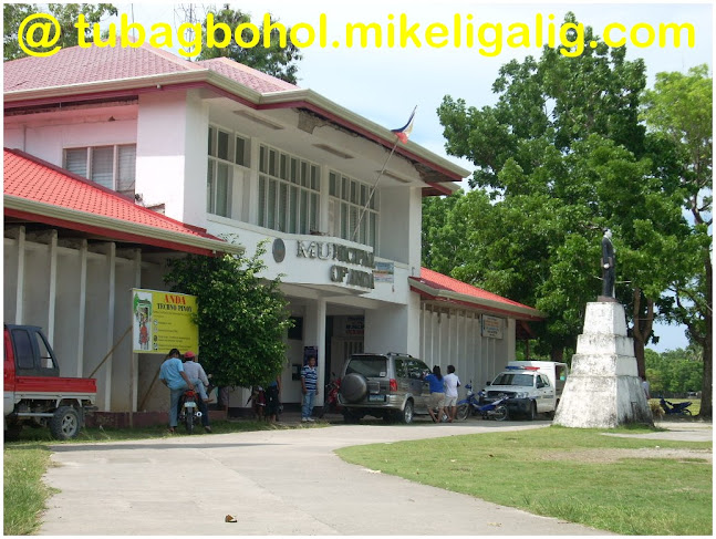 go-to-travel-trip-tour-anda-bohol-philippines-picture179 - Town Hall of Municipality of Anda, Bohol - Anda - Bohol