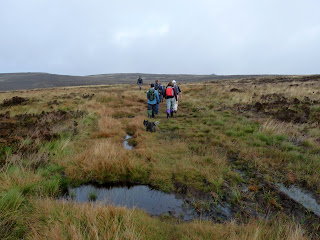 A bit boggy in places across Goyts Moss