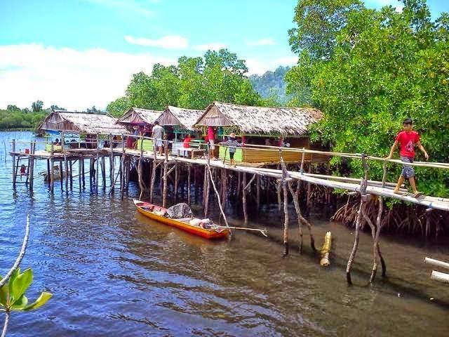 ekowisata mangrove kalukku mamuju