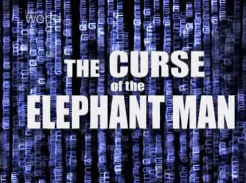 Kl±twa cz³owieka s³onia / Curse of the Elephant Man (2003) PL.TVRip.XviD / Lektor PL