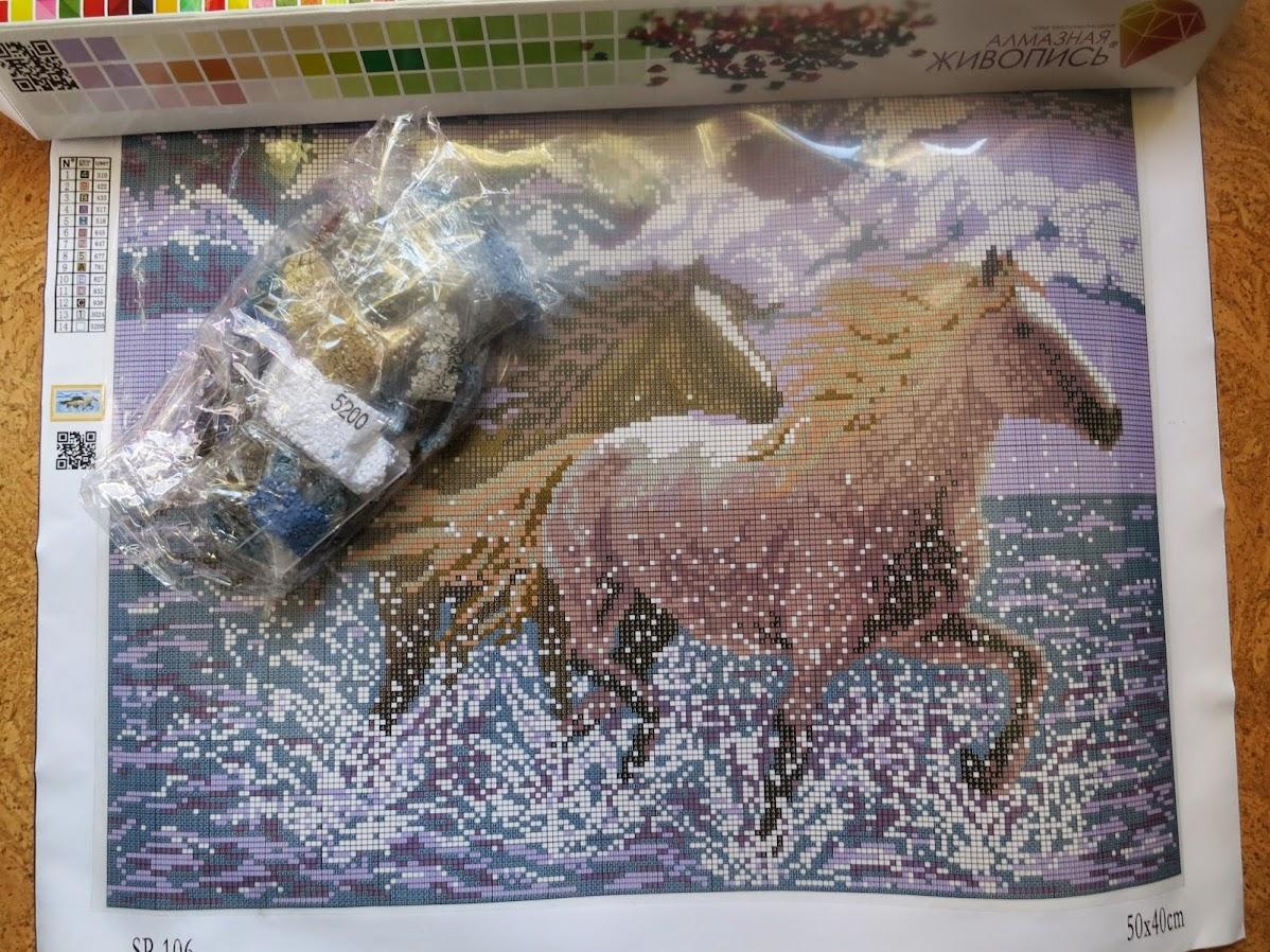 Алмазная вышивка (мозаика) по фото на заказ в Москве - Цветное