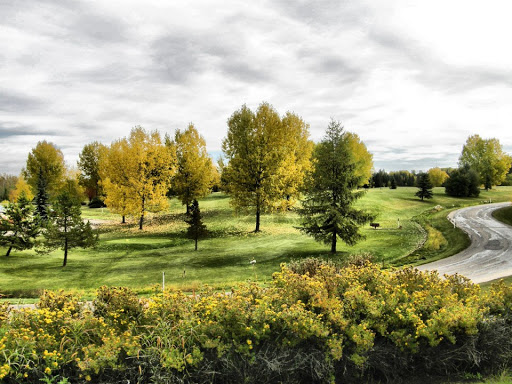 River Bend Golf & Recreation Area, 3800 River Bend Drive, Red Deer County, AB T4P 0Y4, Canada, Golf Club, state Alberta
