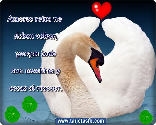 Tarjetas de San Valentín Tu Parada - Imagenes De Dia De San Valentin Con Frases