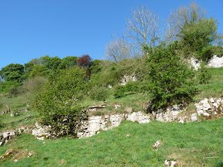 Limestone rocks in Tideswell Dale
